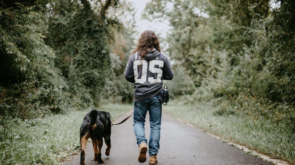 Czy Twój pies czyni Cie bardziej atrakcyjnym?